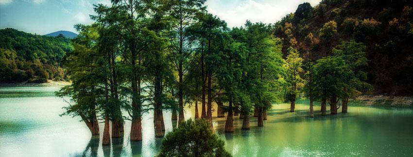 Озеро кипарисов в Сукко